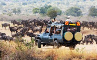 11 Days Uganda Kenya Wildlife Safari