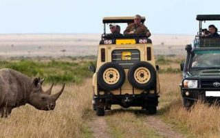 14 Days Kenya & Tanzania Wildlife safari