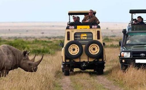 14 Days Kenya & Tanzania Wildlife safari