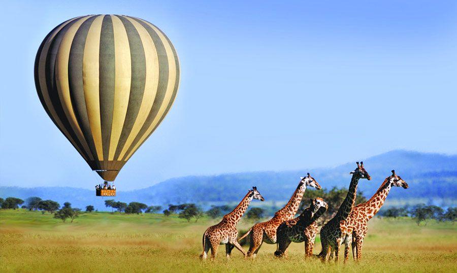 14 days Tanzania and Zanzibar safari