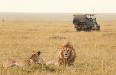 9 days Masai Mara and Kidepo safari