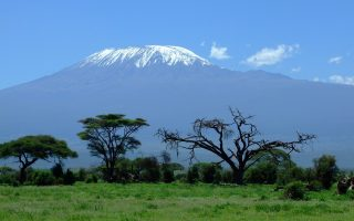 7 Days Kilimanjaro Safari Tour