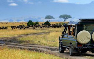 Tanzania tours car