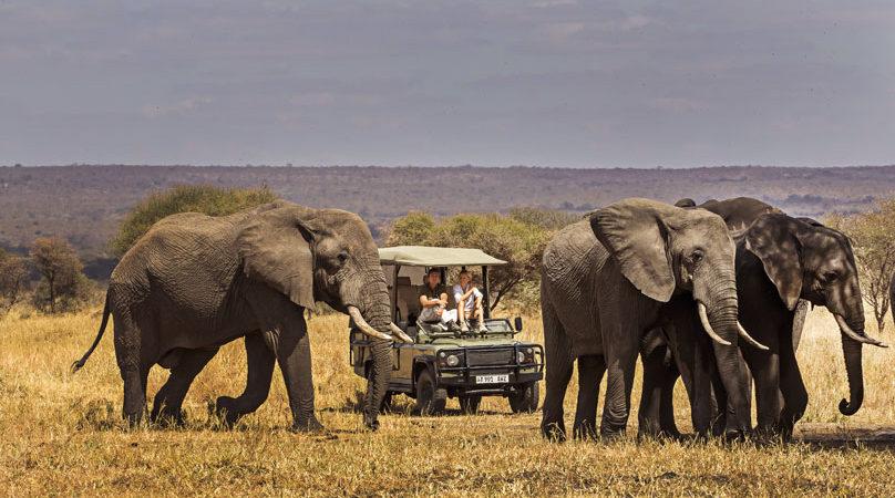 9 days Tarangire and Zanzibar safari